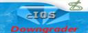 Imagen:CIOSDowngrader.png