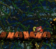 Donkey Kong Country 2-Diddy's Kong Quest (Super Nintendo) juego real 002.jpg