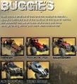 FUEL Buggies.jpg