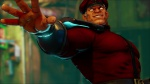 Street Fighter Srceenshot 26.jpg