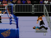 WWF Rage in the Cage (Sega CD) juego real 003.jpg