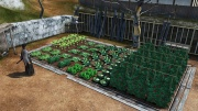 Ryu Ga Gotoku Ishin - Another Life - Growing Vegetables (3).jpg