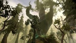 Ferelden 250px-Bosque-de-brecilia-imagen