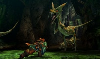 Pantalla-07-juego-Monster-Hunter-4-Nintendo-3DS.jpg