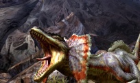 Pantalla-08-juego-Monster-Hunter-4-Nintendo-3DS.jpg