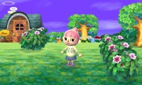Animal Crossing Jump Out 011.jpg