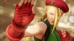 Street Fighter V Scan 31.jpg