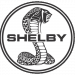 Assetto - Shelby.png