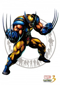 Marvel vs Capcom 3 Wolverine.jpg