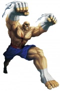 Sagat Street Fighter x Tekken.jpg