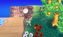 Animal Crossing Jump Out 010.jpg