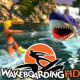 Wakeboarding HD PSN Plus.jpg